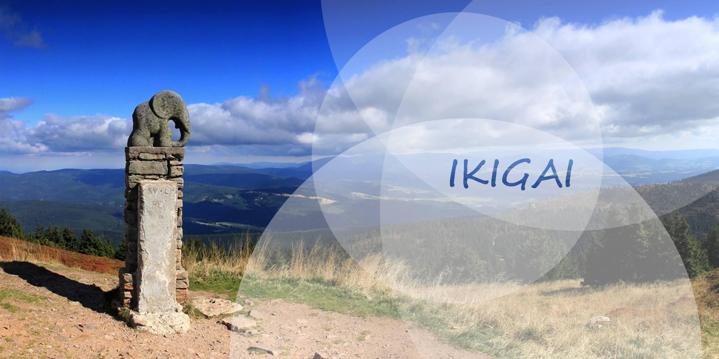 IKIGAI
